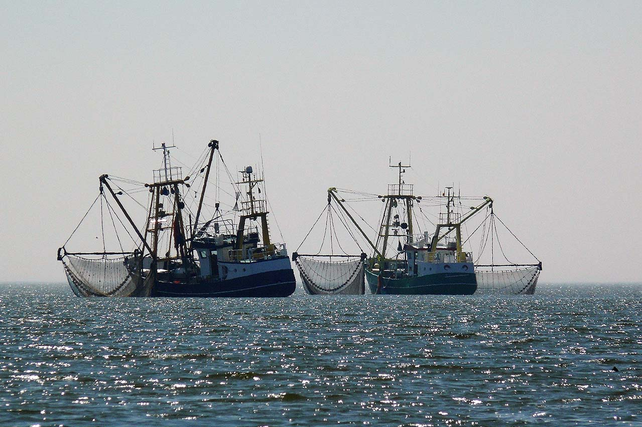 Hanwa Singapore in possible US $20 million fishing vessel bunker delivery bad debt